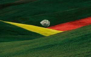 I paesaggi di Franco Fontana: l'arte di rendere visibile l'invisibile
