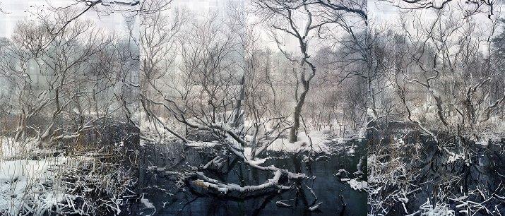 """""""The white contamination"""" di Florian Ruiz, il dolore della natura"""
