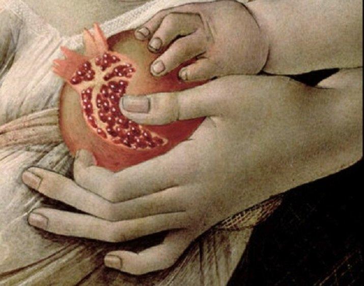 forma anatomica del cuore