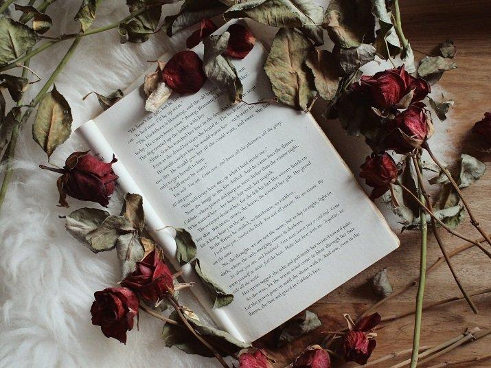 Amai, poesia di Umberto Saba