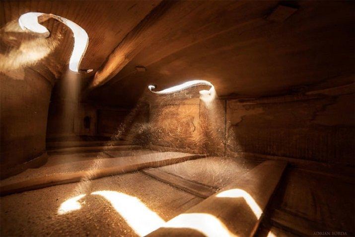"""""""Serenade for Strings - La luce interiore"""" di Adrian Borda - Dentro un violoncello"""