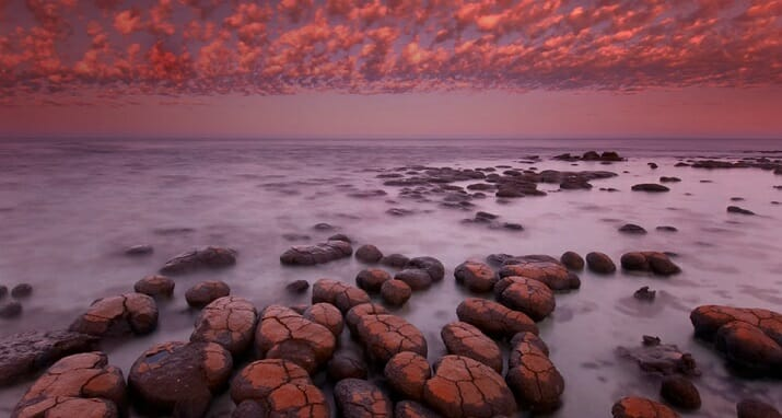 Wildlife di Frans Lanting. Stromatolites at down