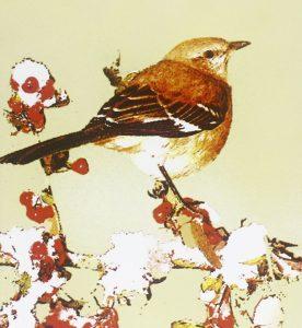 'Il buio oltre la siepe' di Harper Lee. Un capolavoro senza tempo