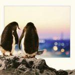 Pinguini Tattici Nucleari con Fuori dall'Hype Tour