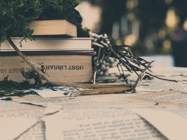 Il lettore moderno e antico. Da Leopadi a Pennac