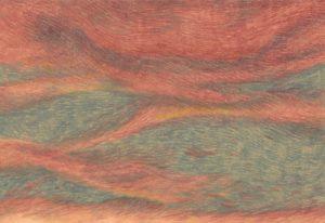 'Tramonti di Cartone' di Marcello Affuso. Lotte e passioni di vita
