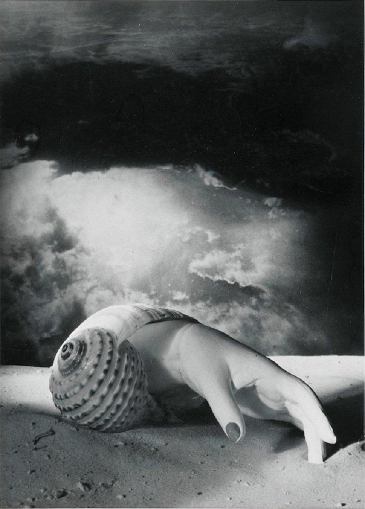 """""""Hand-Shell"""" di Dora Maar, 1934"""