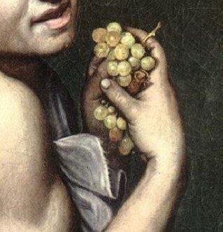 """Il """"Bacchino malato"""" di Caravaggio. Dettaglio uva con acini marci"""