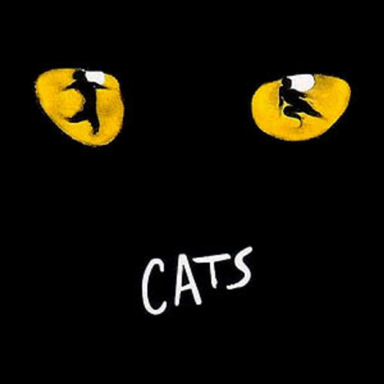 """Il musical """"Cats"""""""