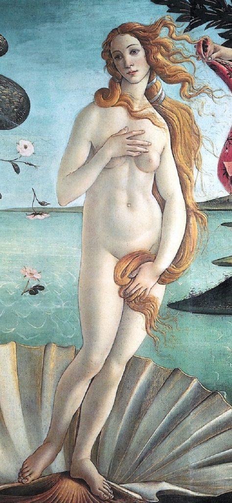 tipo Venus Pudica