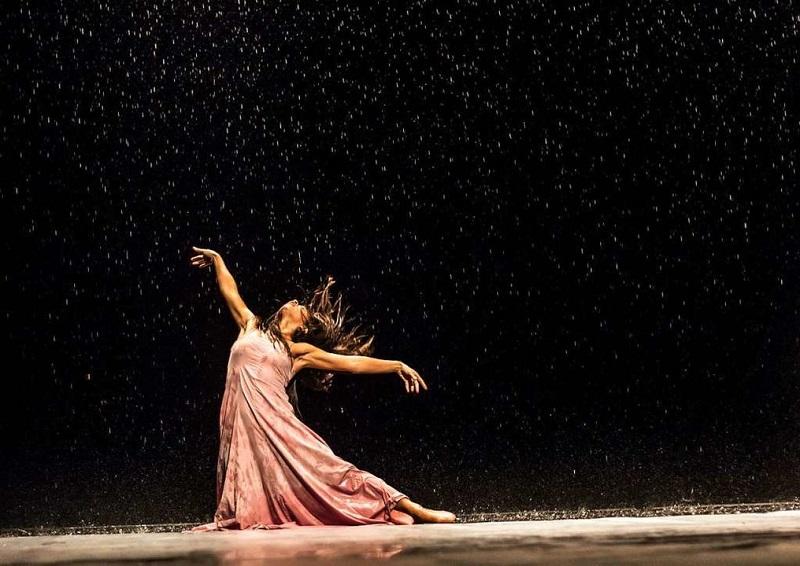 Il Tanztheater Teatro-Danza di Pina Bausch