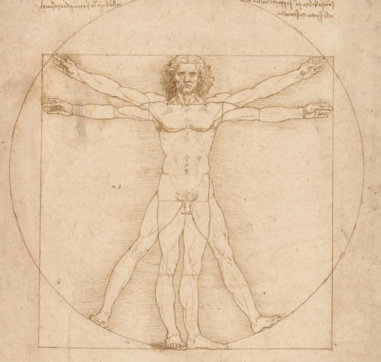 """L'""""Uomo Vitruviano"""" di Leonardo da Vinci. Dettaglio"""